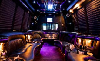 15 Person Party Bus Rental Fort Myers